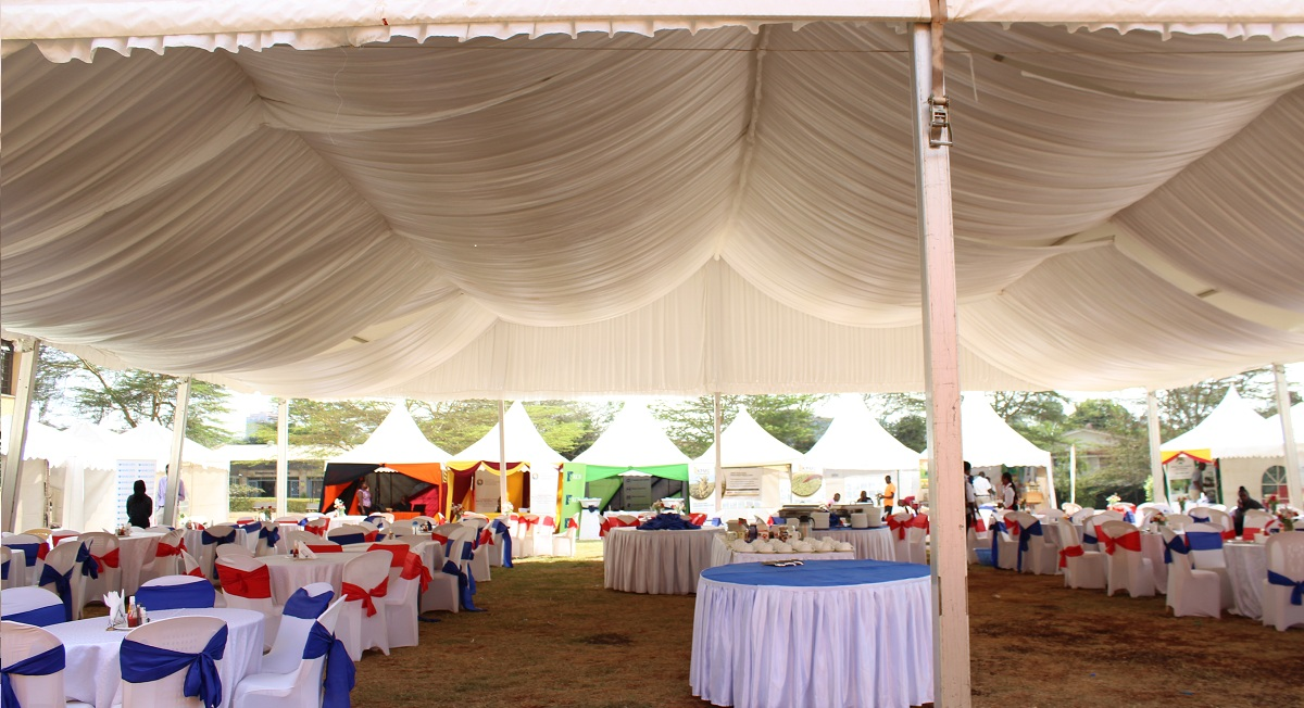 party tent 4
