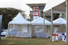 party tent 1