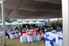 party tent 3